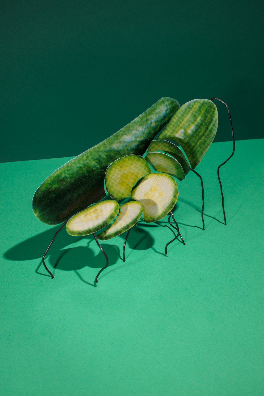 Seedless_Cucumbers_Imported_Fresh_2_$4_2017.jpg