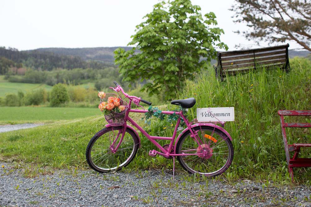 Route 26. Foto:  Sven-Erik Knoff
