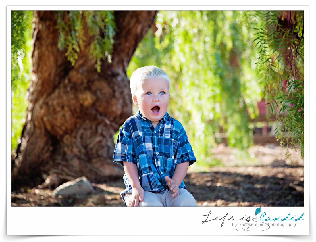 leo carrillo family photographer