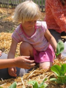 School Garden Program