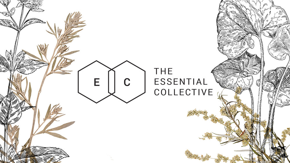 Owl House Creative - The Essential Collective