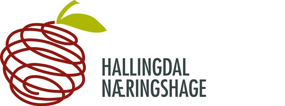 EUROPE-NO-Hallingdal Næringshage AS.jpg