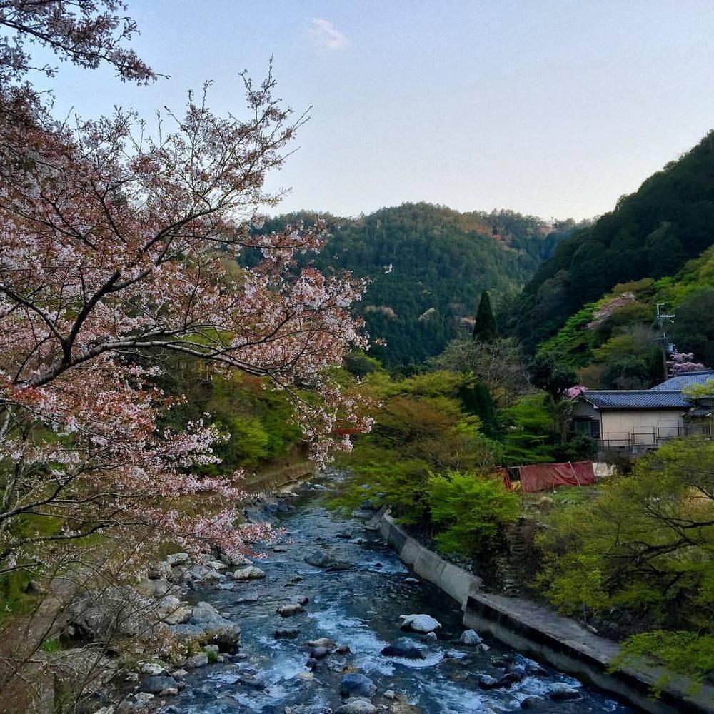 Explore. Dream. Discover. #travel #japan #kyoto #hiking #adventure #livingthedream #radicaldreamer #nature #rivers  (at 京都 清滝川)