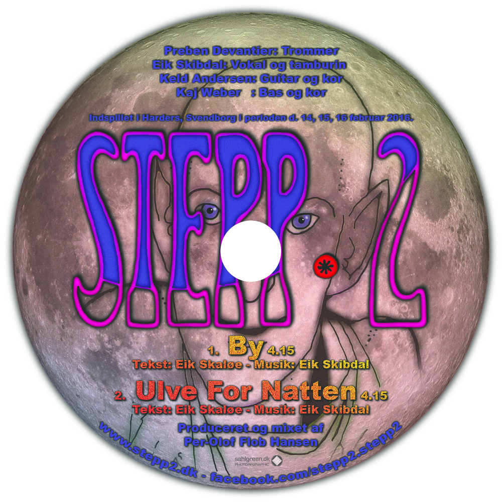 STEPP 2 CD.jpg