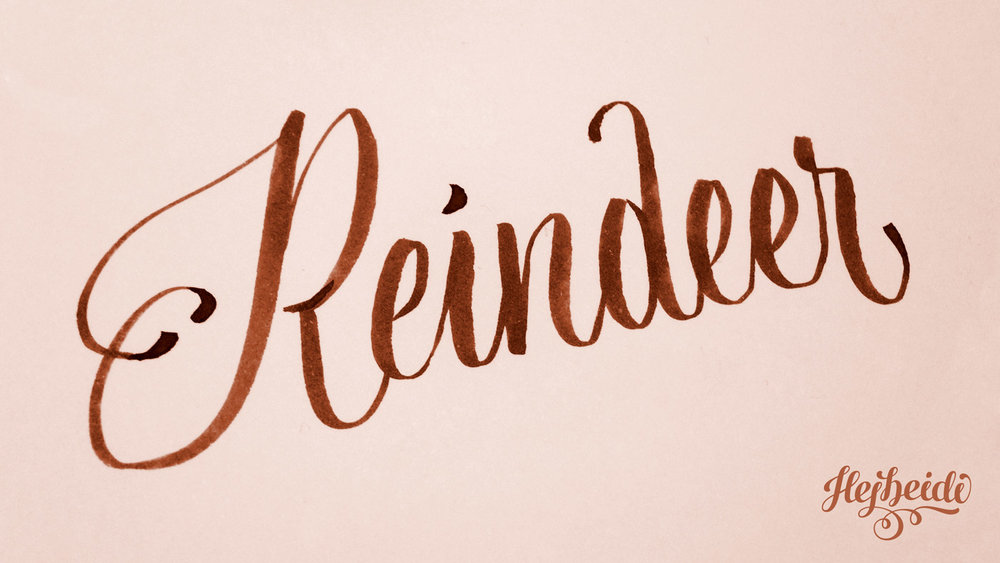 01_Reindeer.jpg