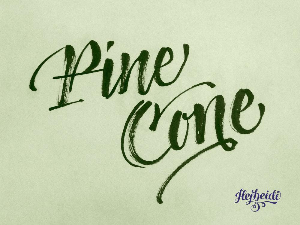 06_PineCone.jpg