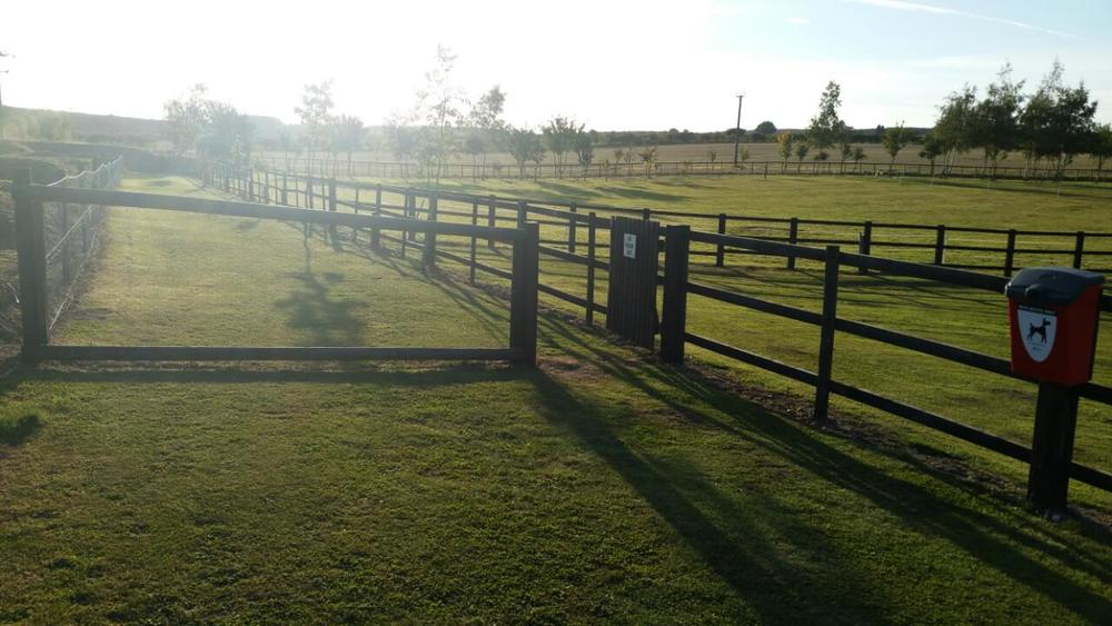 Fenced-off dog walking area