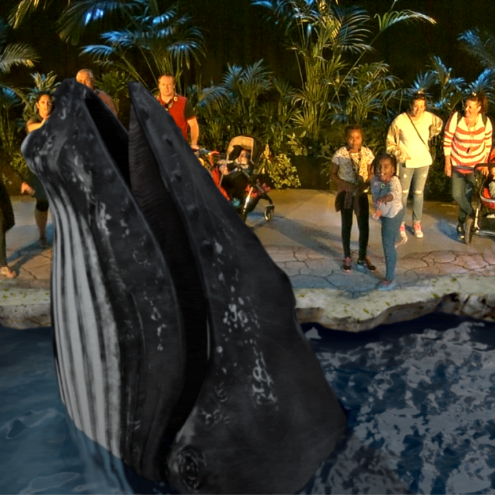 Augmented Reality Whale.png