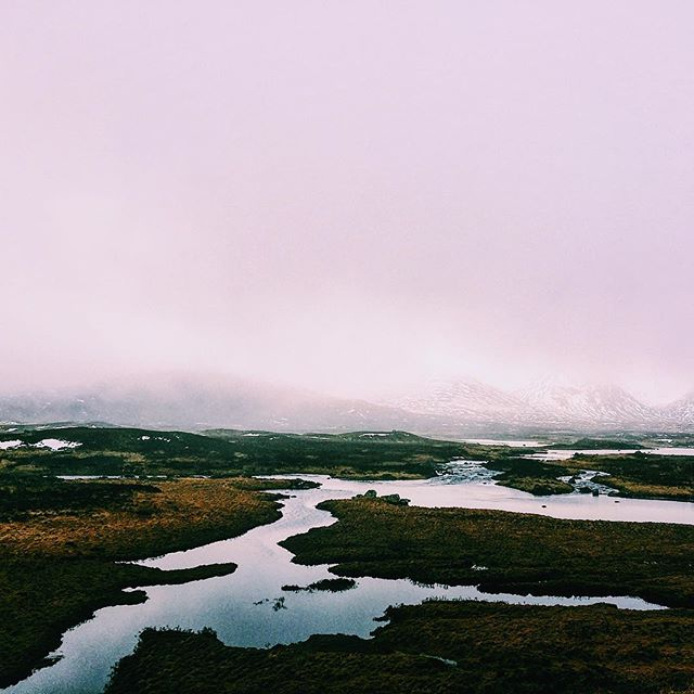 The dead marshes! Glencoe, Scotland // #vsco #vscocam #nature #mountains #winter #lake #travel #explore #hike #adventure #scotland #glencoe