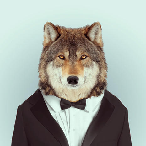 wolf_2.jpg