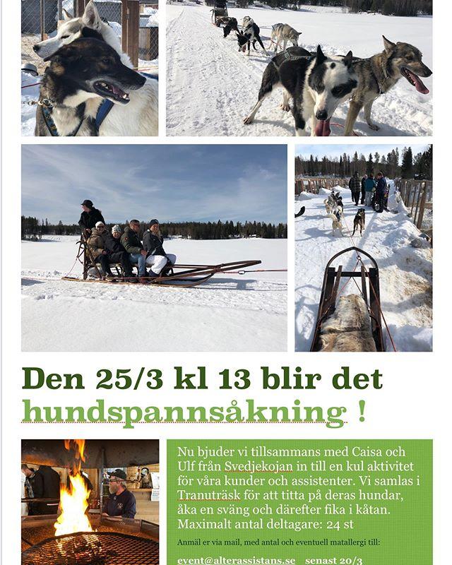 Den 25/3 kl 13:00 bjuder vi in våra Alterkunder och medföljande assistenter till ett slädhundsevenemang i samarbete med Svedjekojan (Caisa och Ulf Olhsson + deras fina draghundar). Vi inleder med att träffa hundarna , se på när hundspannen görs i ordning och sen åker vi en sväng. Därefter blir det fika i Svedjekojans fina kåta. Maximalt antal hundspannsåkare är 24 st. Anmäl er till evenemang@alterassistans.se senast den 20/3 kl 12:00. I anmälan skall kundens namn samt namn på den/de assistenter som följer med framgå. Ange också eventuell matallergi i anmälan.  Vi ses 👍🏻 #alterassistans #hundspann #personligassistans #alterhjärtan