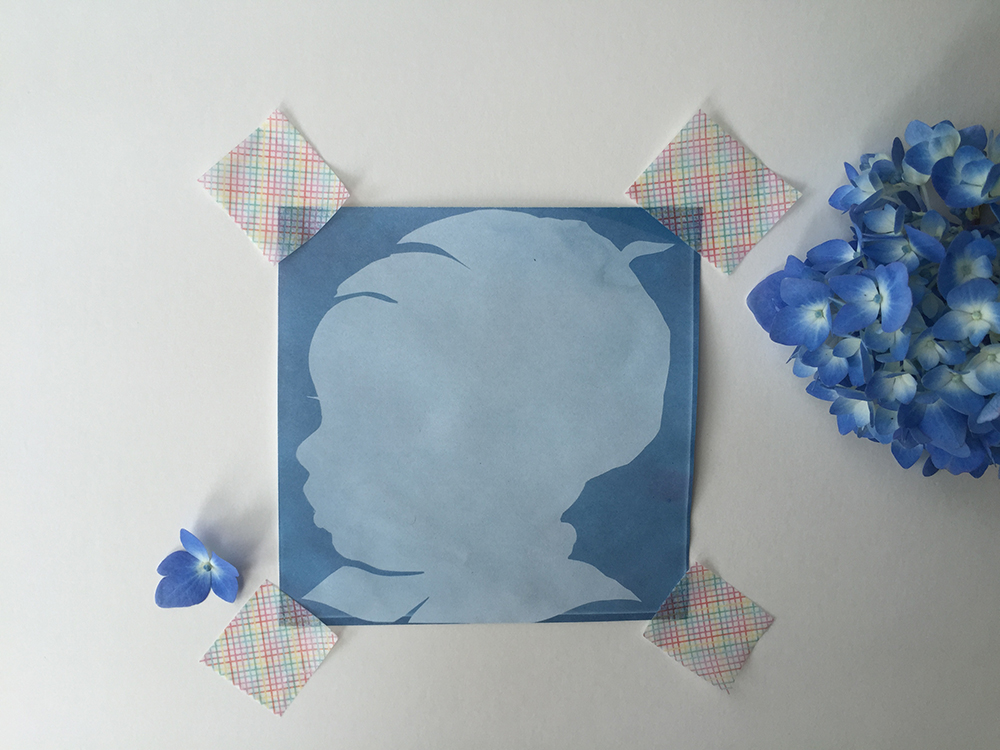 How To Make Sunprint Silhouettes Rebecca Pitts