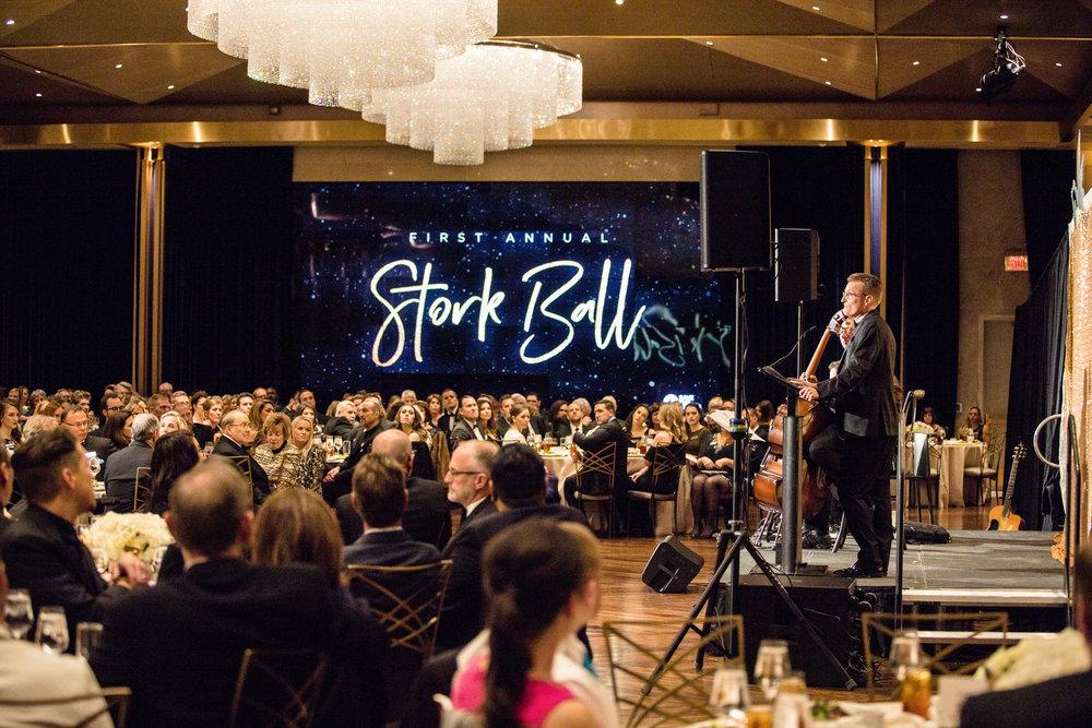 Highlights from Storkball