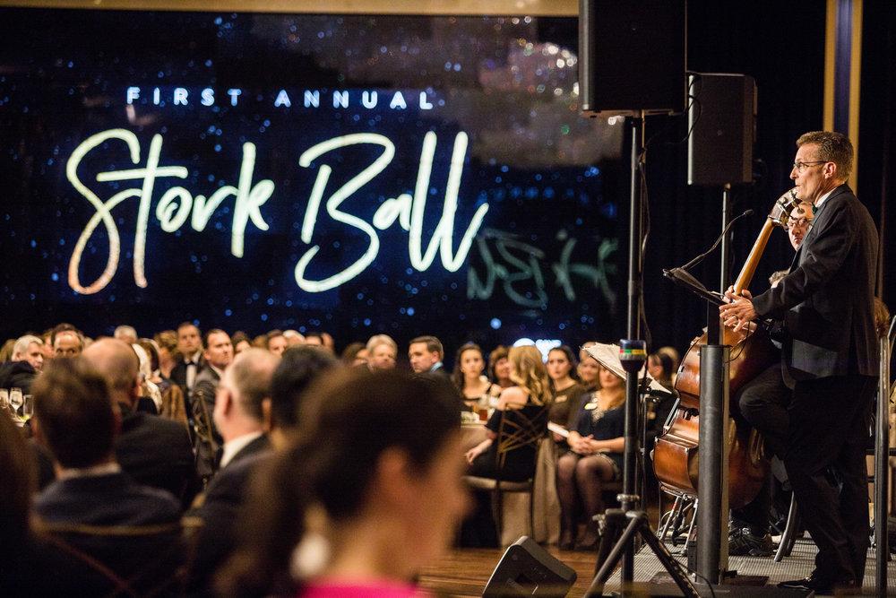 StorkBall 2018