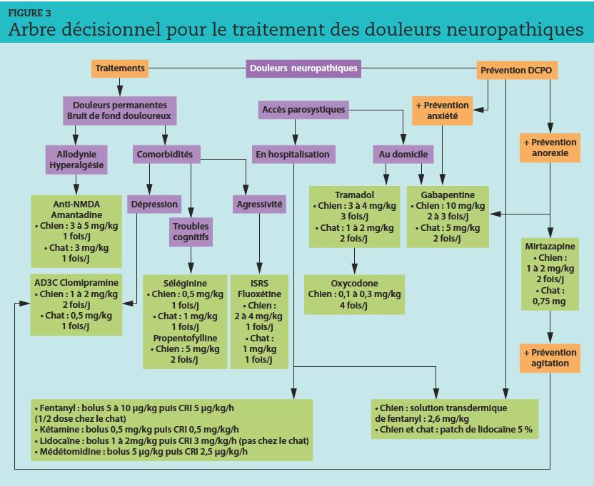 NMDA : N-méthyl-D-aspartate ; ISRS : inhibiteur sélectif de la recapture de la sérotonine ; CRI : perfusion à débit constant ;DCPO : douleurs chroniques postopératoires.