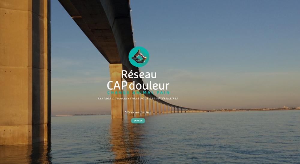 capdouleur-ilederé-homepage.jpg