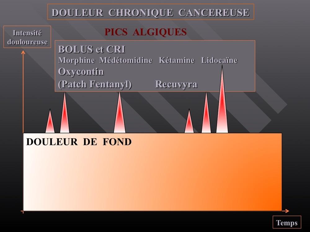 Diapositive16.jpg