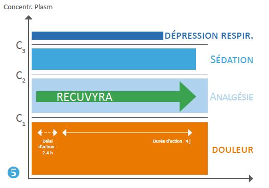 Figure 5 :  La solution transdermique de fentanyl Recuvyra assure une concentration plasmatique analgésique stable de 4 à 7 jours.