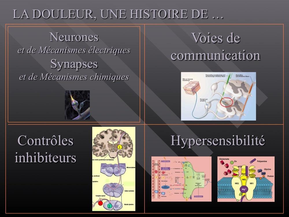Diapositive05.jpg