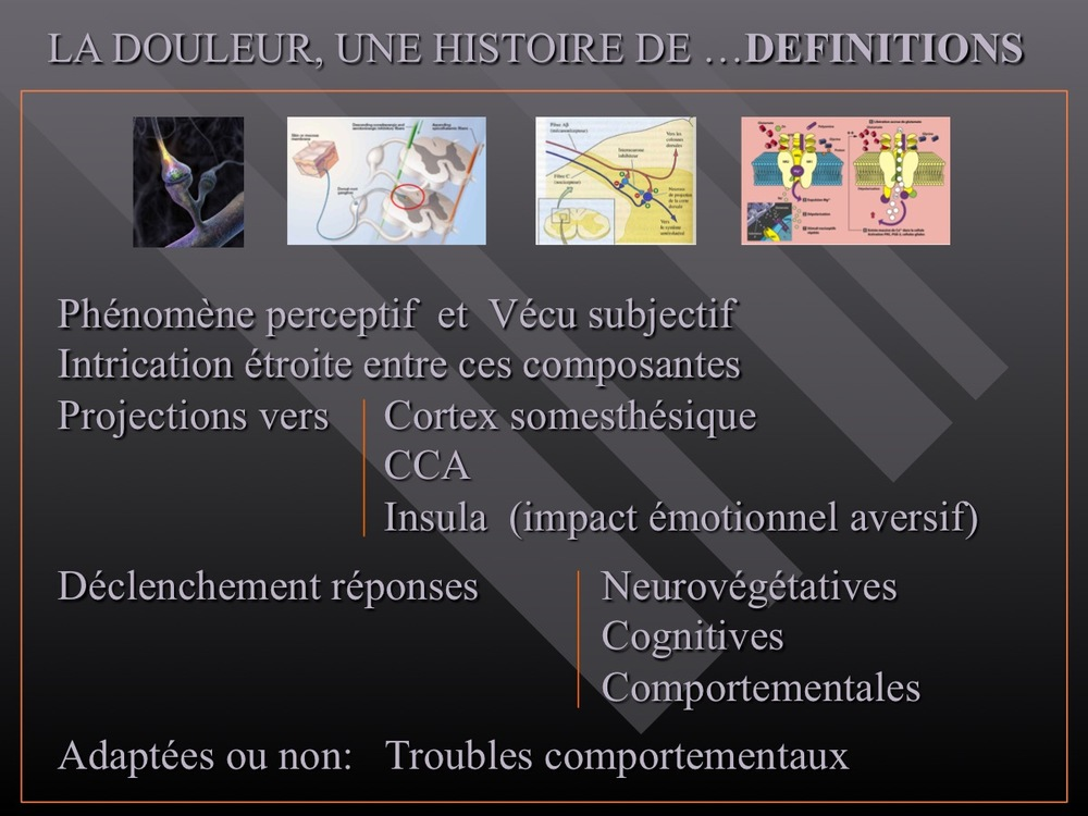 Diapositive46.jpg