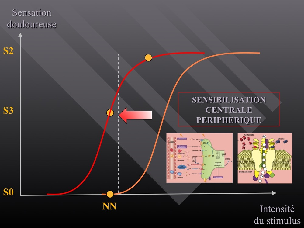 Diapositive62.jpg