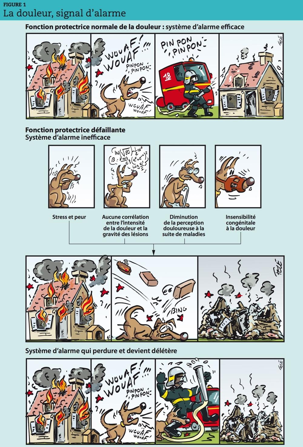 """Hippocrate (460-377 avant JC) dans son Corpus hippocratum parlait de la douleur aiguë comme le """"chien de garde de notre santé qui aboie pour alerter l'organisme"""". La douleur persistante, inutile, est ce chien de garde qui continue à aboyer, au risque de faire fuir les éléments qui sauvent. Dégageant la médecine des légendes et des dogmes, respectant avant tout le patient (primum non nocere) Hippocrate était déjà le fondateur de la médecine… moderne."""