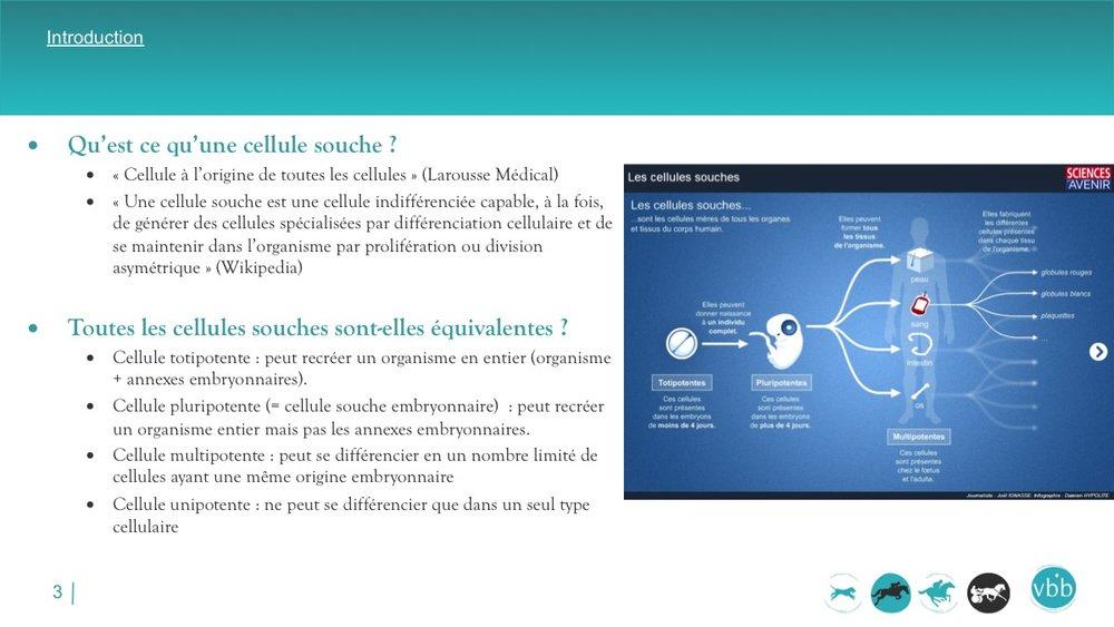 Diapositive03.jpg