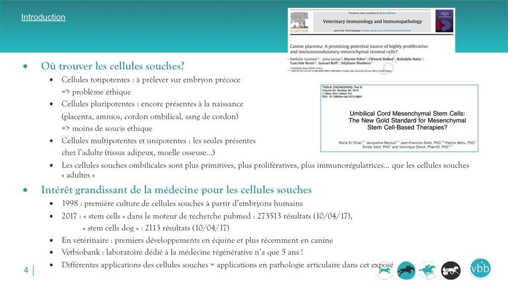 Diapositive04.jpg