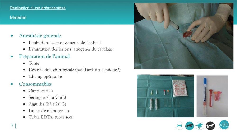 Diapositive07.jpg