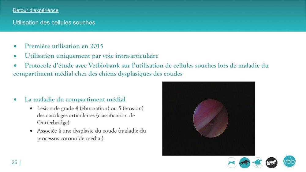 Diapositive25.jpg