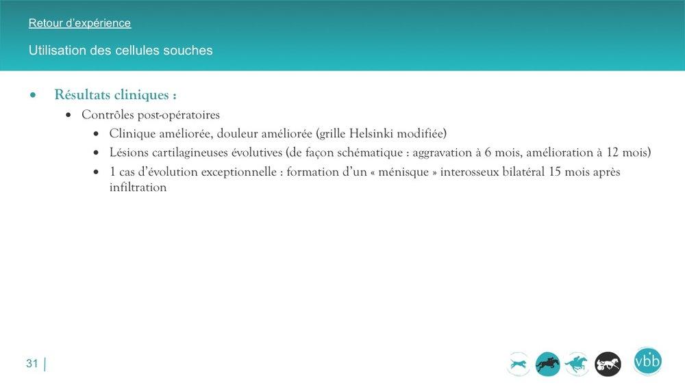 Diapositive31.jpg