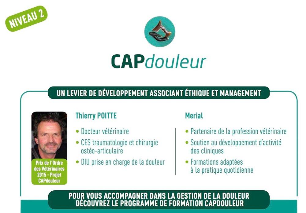 CAPdouleur Niveau 2.jpg
