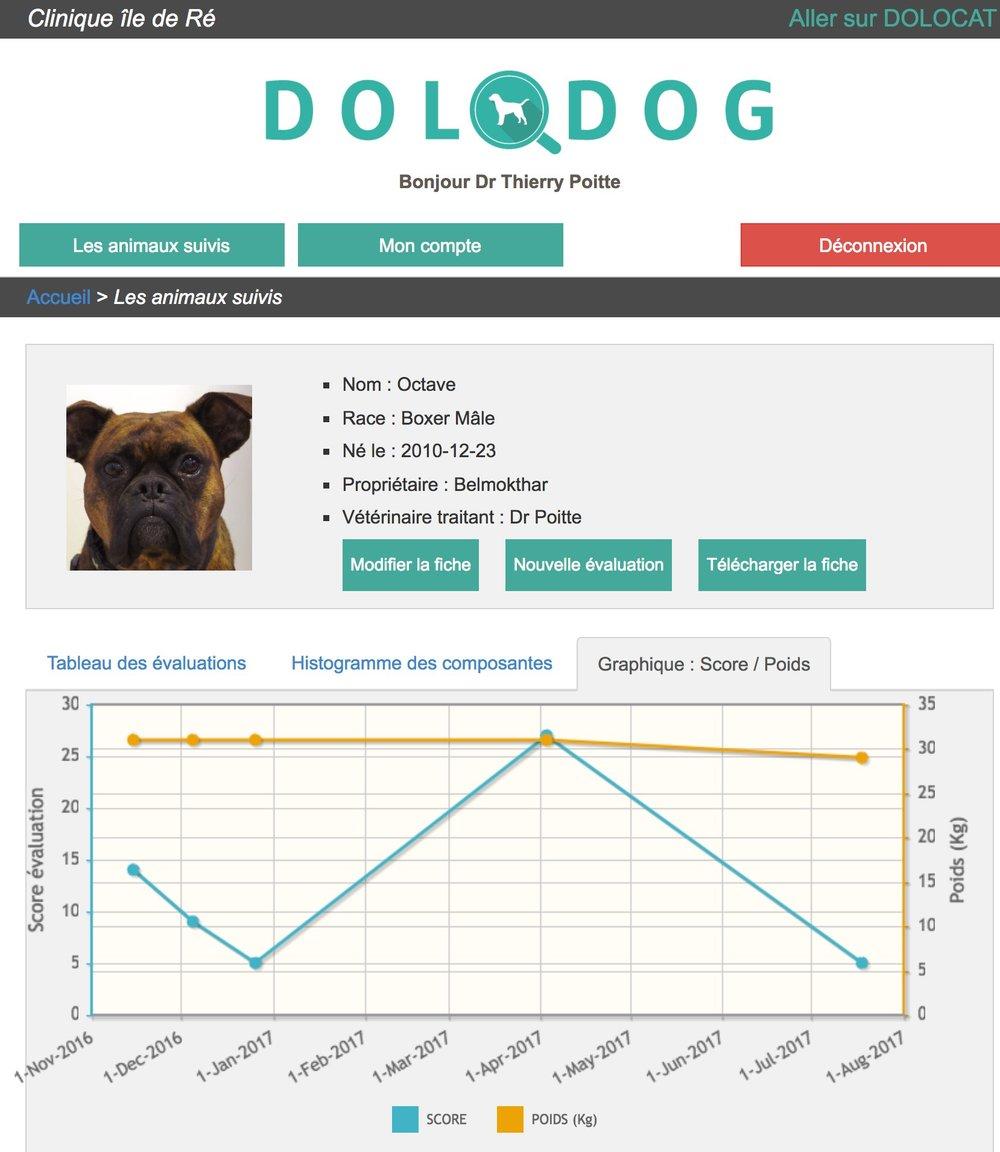 DOLODOG OCTAVE 3.jpg