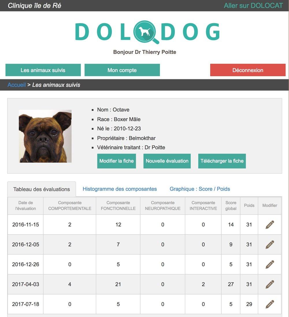 DOLODOG OCTAVE2.jpg