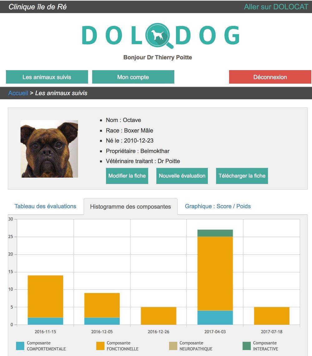 DOLODOG OCTAVE4.jpg