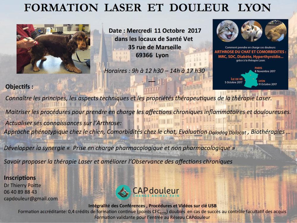 LASER DOULEUR LYON.jpg