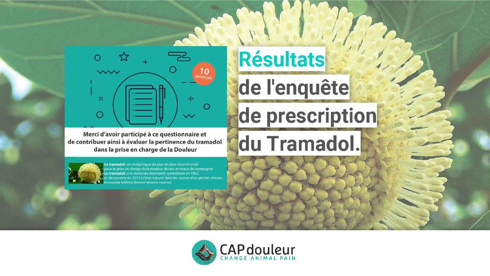 CAPdouleur-Résultat-ENQUÊTE DE PRESCRIPTION DU TRAMADOL (1)_Page_01.jpg