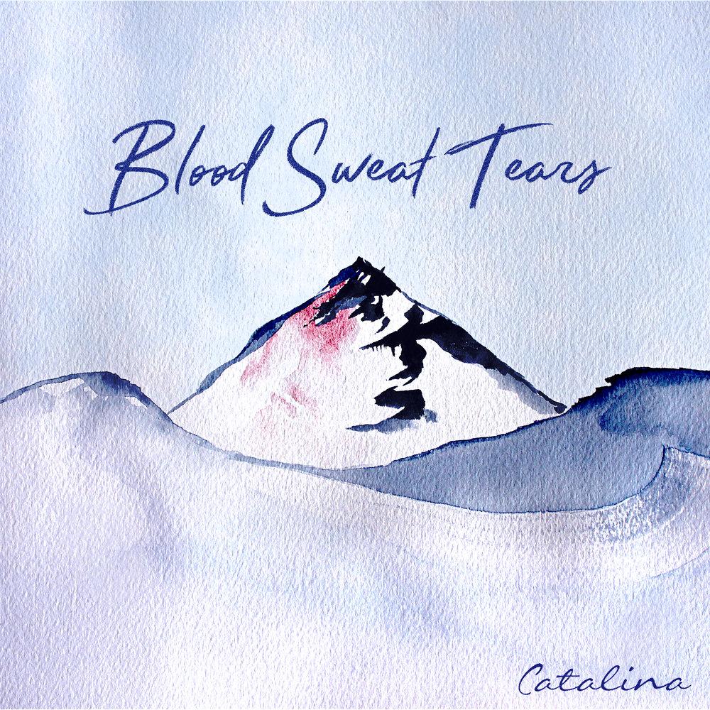 Blood Sweat Tears (Official Artwork).jpg