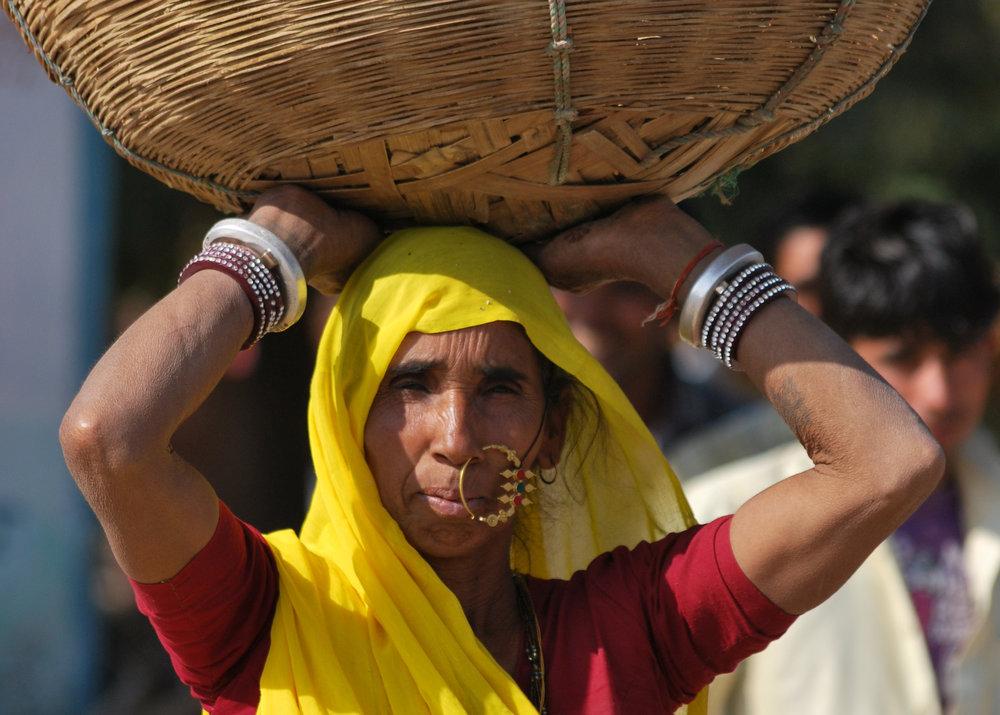 Rajasthan-(549).jpg