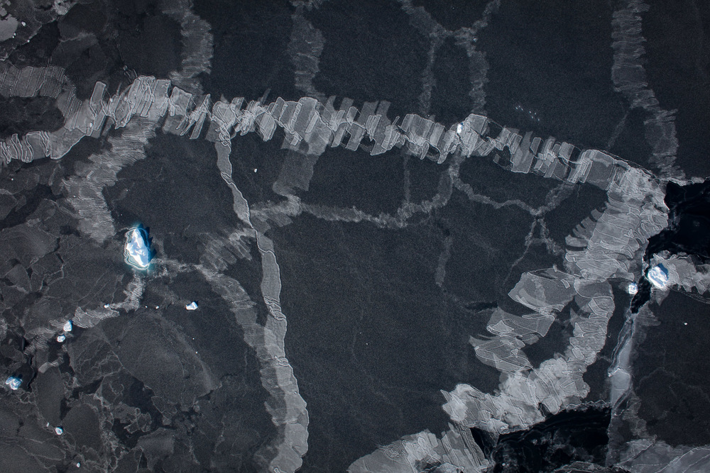 Finger rafting of ice floes in Arctic Ocean sea ice