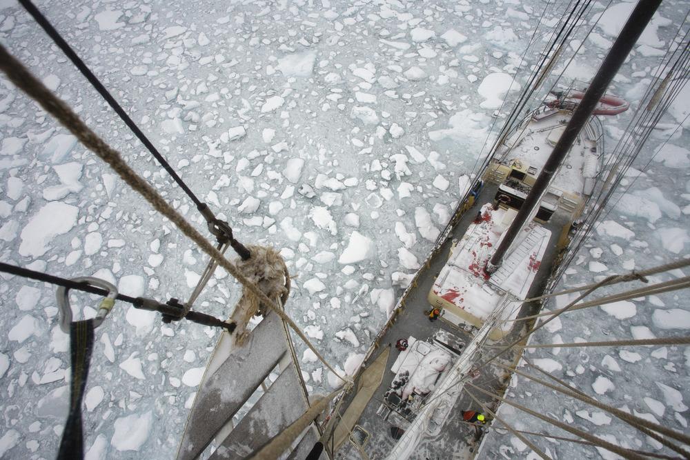 Nick-Cobbing-Noorderlicht-Arctic-sailing-ship-01.jpg
