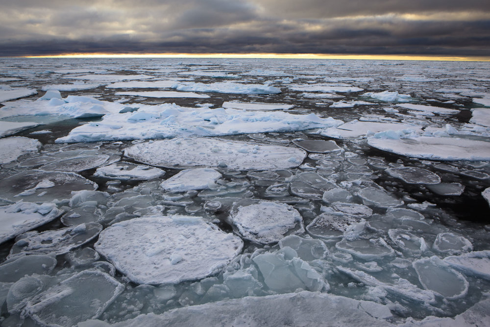 pancake-ice-forming-on-the-arctic-ocean