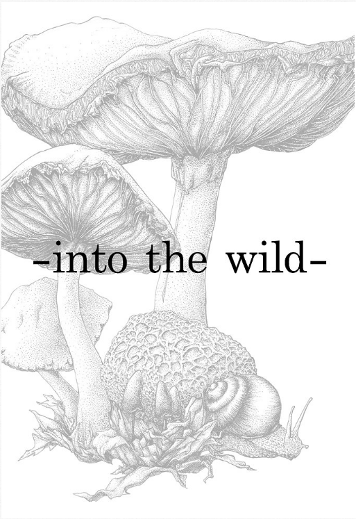 Into the Wild Image.png