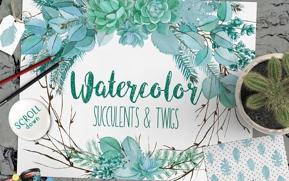 Watercolor Wedding Succulents.jpg
