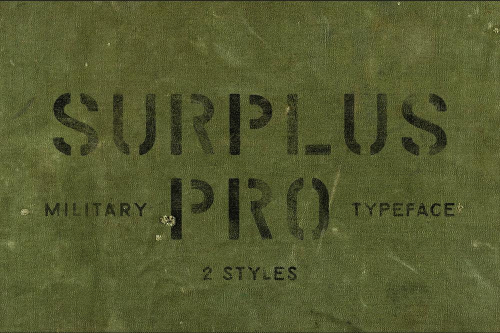 SurplusPro_1.jpg
