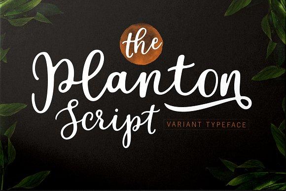 Genesis Planton.jpg