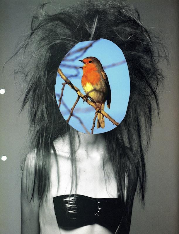 - La Femme (Robin)Cut Out+Magazine Photo