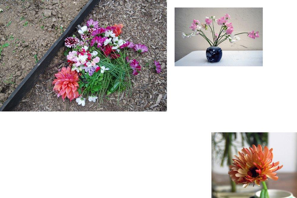 floral collage ummm.jpg