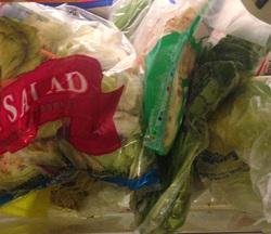 VeggiDome Bagged Veggies.jpg