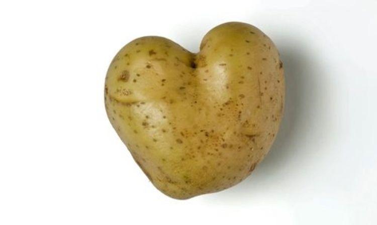 VeggiDome Potato